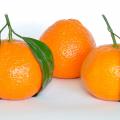 Mandarino, guida alle proprietà benefiche e terapeutiche Benessere