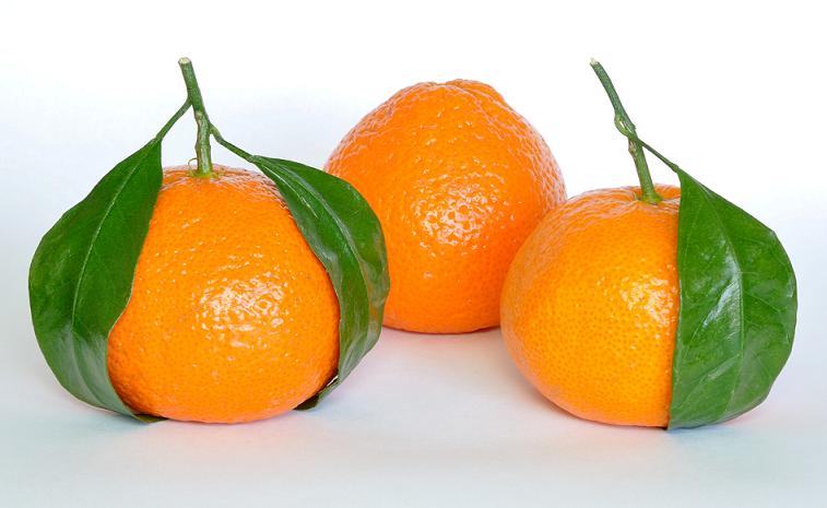 Mandarino, guida alle proprietà benefiche e terapeutiche