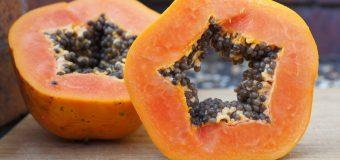 Le proprietà benefiche della Papaya