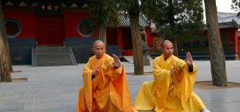 Shaolin, una pratica che fonde corpo e mente: quali benefici?