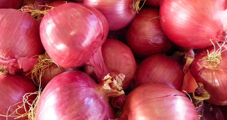 Cipolle rosse, l'alimento anticancro per eccellenza Proprietà degli alimenti