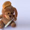 Influenza estiva: come riconoscerla e prevenirla Malattie
