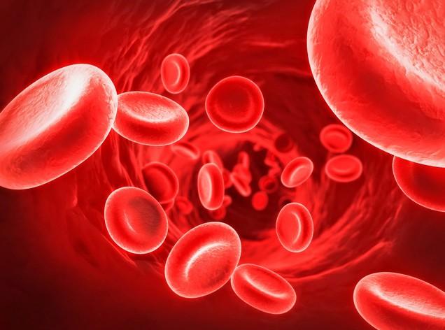 Sideremia alta: cause, rimedi e sintomi da eccesso di ferro Malattie