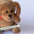 Influenza in anticipo: primo caso a Parma di influenza di tipo A Malattie