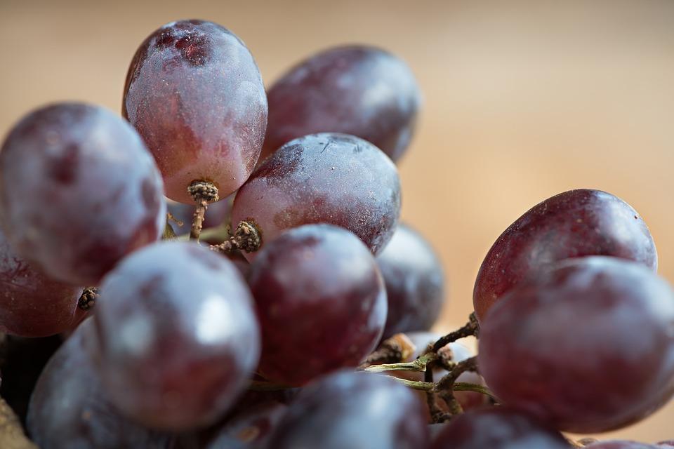Uva, il frutto autunnale che aiuta a perdere peso Proprietà degli alimenti