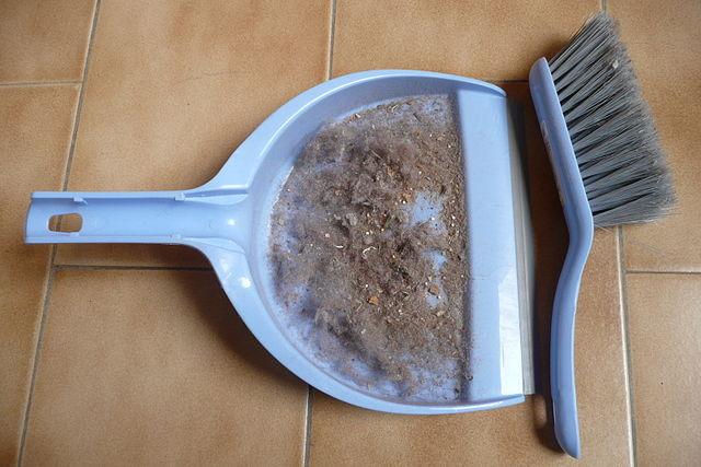 Come eliminare gli acari della polvere, dannosi per la salute Rimedi