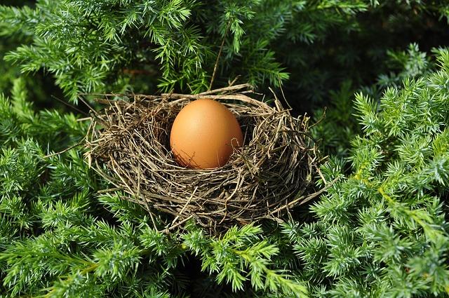 Albume d'uovo: guida ai benefici e ai metodi di preparazione Benessere