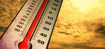 Colpo di calore: come agire nell'immediato e scongiurare il peggio