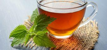 I 5 potenziali benefici del bere il tè all'ortica