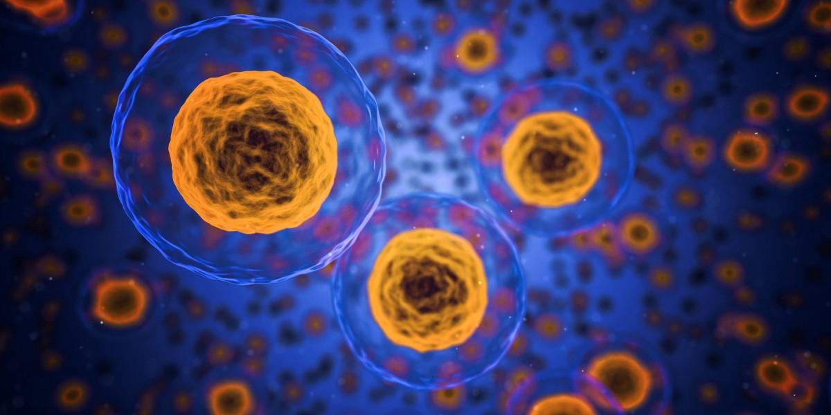 Falsi miti sulle allergie alimentari Benessere