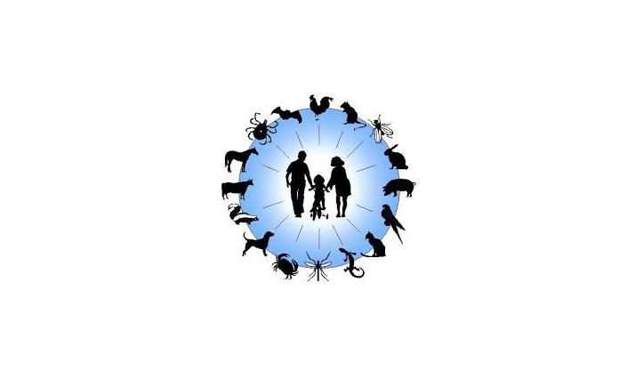 Che cos'è la zoonosi? Malattie