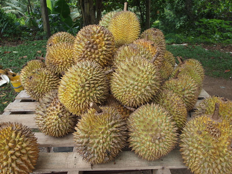 Gli effetti benefici per la salute del durian Proprietà degli alimenti