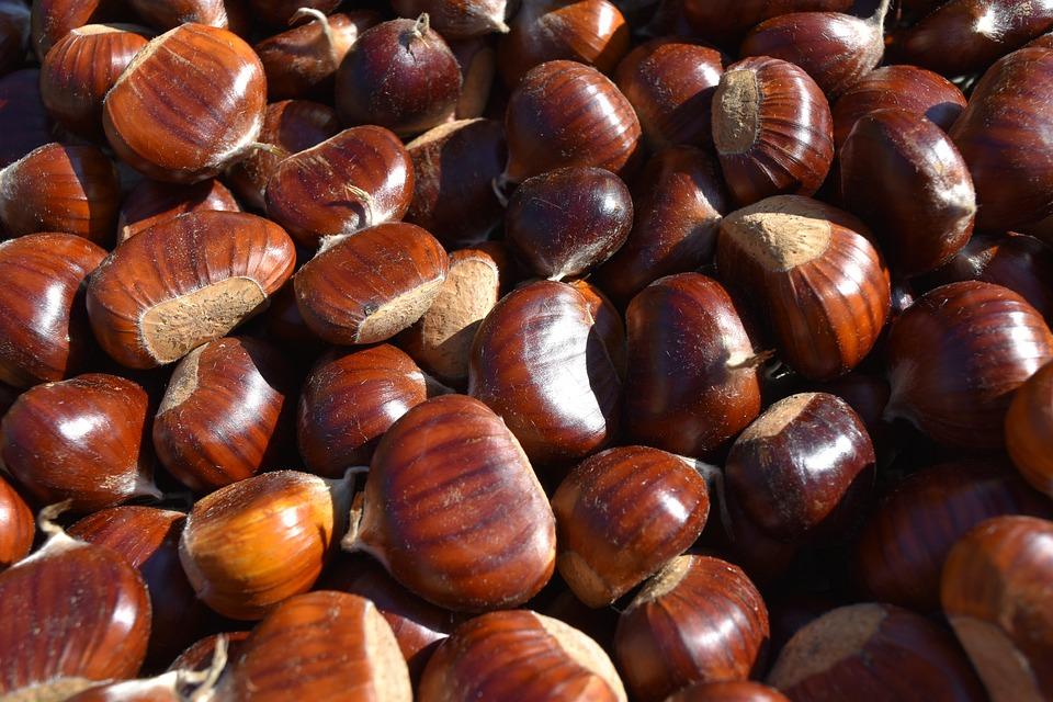 I benefici per la salute delle castagne Proprietà degli alimenti
